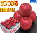 【9月りんご第1弾】 もぎたて サンつがる 家庭用 10キロ青森りんご 林檎 りんご 早生