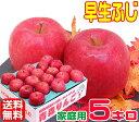 【常温便送料無料】10月りんご早く成熟する品種 早生ふじ 家庭用 5キロさっぱりと、ふじに似た風味♪訳あり11青森県からもぎたてを産地直送!りんご 林檎 毎日のフルーツやコールドプレスやスムージーにも♪X 楽天 スムージー apple 健康