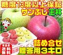 【11月下旬から12月上旬に順次発送】【厳選された特選品だけを使用】糖度13度 サンふじ 王