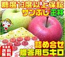 【11月下旬から12月上旬に順次発送】【厳選された特選品だけを使用】糖度13度サンふじ王林