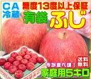 A【常温便送料無料】グルメ大賞受賞品種 有袋ふじ 家庭用 5キロ 青森りんご ふじりん