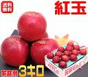 【常温便 送料無料】お菓子作りに最適 紅玉 家庭用 3キロ箱内容量は約2.5キロになりますお菓子作りの人気者!りんごの本場青森県から産地直送♪煮ても煮崩れしにくく!アップルパイ作りに最適!フルーツ X【RCP】楽天 スムージー apple