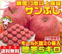 糖度13度以上保証 サンふじモールド 贈答用 5キロサンふじ 青森りんご ふじりんご りんご
