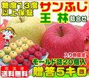 糖度13度以上保証 サンふじ王林詰め合せ モールド 贈答用 5キロサンふじ ふじりんご りんご