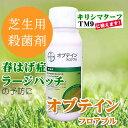 殺菌剤(芝生) オブテインフロアブル 500ml 芝生用殺菌剤 春はげ症予防 ラージパッチ フェアリーリングに効果のある殺菌剤 日本芝用