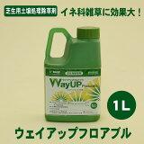 土壌処理除草剤!芝生用(雑草発生前) ウェイアップフロアブル 1L メヒシバ・カタビラ等のイネ科雑草に効く