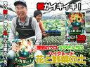 【培養土・園芸用土】 鹿児島産 大平さんちの花と野菜の土 20リットル 園芸のプロが作った培養土