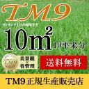 芝生 TM9 10平米 鹿児島産 高麗芝 送料無料 手入れが楽 簡単で見た目もキレイな芝生
