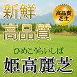 芝生!姫高麗芝 1平米 高品質・新鮮 葉が細く密生度が高い芝生 やっぱり人工芝より天然芝! ガーデニングDIY