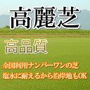 芝生 高麗芝 1平米 鹿児島産【店頭受取対応商品】...