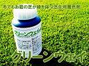 芝生着色剤 グリーンウェイ 1L 冬でもお庭の芝生が緑を保つ【RCP】