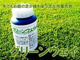 芝生着色剤 グリーンウェイ 500ml 冬でもお庭の芝生が緑を保つ