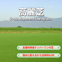 芝生!普通高麗芝 (日本芝) 1平米 最も広く利用される高麗芝で耐塩性が高い やっぱり人工芝より天然芝!ガーデニングDIY