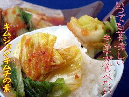 いつでも美味しいキムチが食べたーい!残り野菜でも、あっというまにウマいキムチに早変わり!一度食べてみて♪ガンコ社長のキムジョンキムチの素
