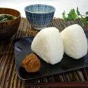 特別栽培で育てた新米こしひかり5kg おまけ付令和元年産 送料無料 無洗米 こしひかり おおすみファーム 鹿児島 九州