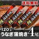 【送料無料】国産うなぎ蒲焼 120〜133g×4尾(蒲焼タレ...