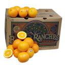 【箱売り】 オレンジ 1箱(56玉~88玉入り) [フロリダ産・南アフリカ・オーストラリア] 【業務用・大量販売】【RCP】