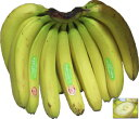 送料無料!!【バナナ】 ハニーバナナ 1房(約2.2kg) エクアドル産 スムージーにピッタリ! 【RCP】 ランキングお取り寄せ
