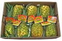 ゴールデンパイン(パイナップル・パインアップル・パイン) 1箱6〜8本入り 【フィリピン】【RCP】