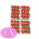 """産地福岡より""""いちごの王様""""をお届け!【博多あまおう】イチゴ好きのあなたに!あまおうの中でも最高級のEX12粒入り4箱"""