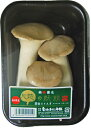 九州産 健康きのこ! エリンギ(エリンギー・えりんぎ) 100g 九州の安心・安全な野菜! 【九州・長崎産】
