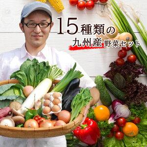 【あす楽】【セット】 おまかせ 九州野菜セット 15