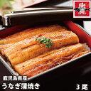 鹿児島県産 うなぎ蒲焼 3尾(1尾 約140g)  魚真