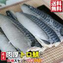 【SALE】厳選 肉厚トロ鯖 訳あり 10枚入り(1枚 約125g)【送料無料 鯖 さば 塩鯖 サバ 塩サバ】