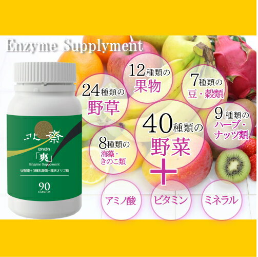 腸を健康にするW酵素と乳酸菌環状オリゴ糖配合サプリ爽はればれ