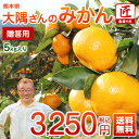南園の匠大隅さんの 贈答用 ギフト みかん5kg 送料無料