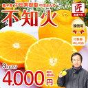 南園の匠中田果樹園 中田さんの贈答用 不知火(デコポン)3kg(9〜12玉)