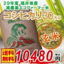 【福井県産 玄米】29年度 コシヒカリ:30kg 無化学肥料...