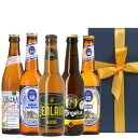 送料無料【ビール5本セット】飲み比べフランスドイツクラフトビール330ml×5本詰め合わせ「ルパース」「ジャンラン」「ホフブロイ」「ピンカス」オーガニックビオBIO海外ビール輸入ビール贈答会社のし対応お年賀日時指定可