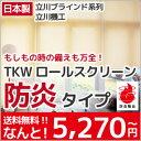 ロールスクリーン ロール カーテン TKW 無地 防炎 ロール スクリーン 幅41m〜60cm 丈51cm〜90cm 調光 P23Jan16