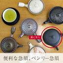 ベンリー急須 鉄鉢 黒くすべ (お茶 贈り物 プレゼント 結婚祝い 新築祝い)