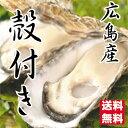生産直送【送料無料】お徳用広島産殻付き 殻付き牡蠣(かき)35個入 (S〜Mサイズ)