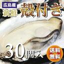 広島産 殻付き 牡蠣 (かき) 30個入り【送料無料】【#元気いただきますプロジェクト】