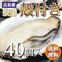 広島産  殻付き牡蠣(かき) 40個入り【送料無料】加熱用...