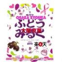大阪京菓ZRサクマ製菓 50Gぶどうみるく〔120円〕×20個 +税 【1k】