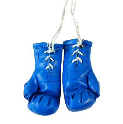 Boxing Gloves,Boxing Punching Gloves,Boxing Gloves Manufacturers India