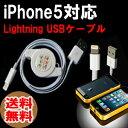 送料無料【相性保証付★NO:A-A-9】iphone5対応充電USBドックケーブル(巻き取り式80cm)【iphone5/ipad4/ipadmini/第5世代iPod touch対応】【関連:DOCK Lightning 8ピンコネクタ ドッグコネクタ lightning ケーブル 充電USBケーブル 30ピンコネクタ 変換】