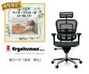 マッサージピロー付  送料無料  新品  正規品 エルゴヒューマン...