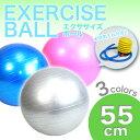 【送料無料】ヨガボール ボディボール バランスボール 空気入れ付き フィットネス/55cm/###ボール55CM/CQB###