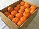 【奈良西吉野産わけありたねなし柿(M~3L 15~20個入り・約4kg)】送料無料