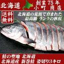 お歳暮 鮭 【 鮭の聖地 北海道 より 最高級ランク 送料無料 北海道産 新巻鮭 姿 切り