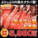 【送料無料】タラバガニサイズMIX 約500g(約5〜10本入り)【楽ギフ_のし】(生本 たらばがに たらば蟹 タラバ蟹 ギフト かにしゃぶ むき身)