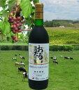 キャンベルアーリ 北海道ワイン