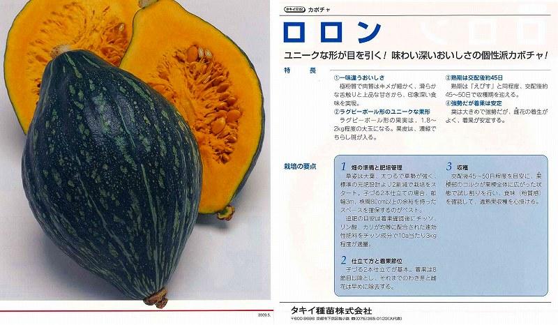 【カボチャ】ロロン〔タキイ交配〕/小袋の商品画像