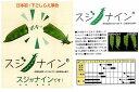 【きぬさやエンドウ】すじなしキヌサヤ スジナイン〔トキタ育成〕/小袋