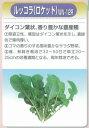 【その他の菜類】ルッコラ(ロケット) ニコル(WN-12R) 〔渡辺農事〕/小袋